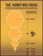 Part of a project created to raise awareness of the Honey Bee Crisis. By Sue Buenger.