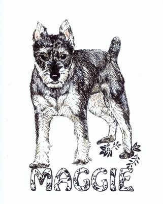 Ink Drawing by Sue Buenger 8x10 SOLD